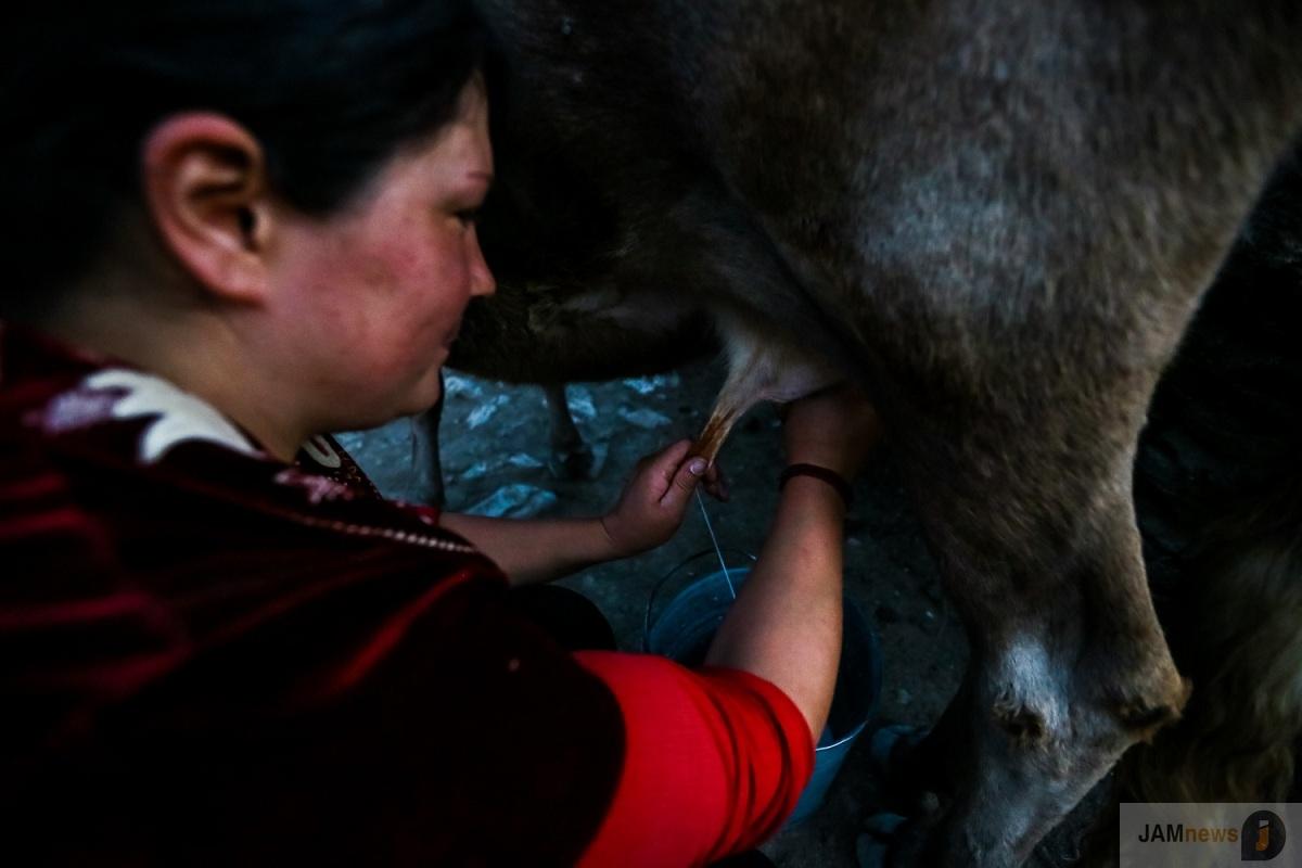 """""""Скажи, сколько у тебя овец, и я скажу, насколько ты богат"""" - горное село в Азербайджане, фотоистория. Село Будуг, 50 километров от города Губа на севере"""