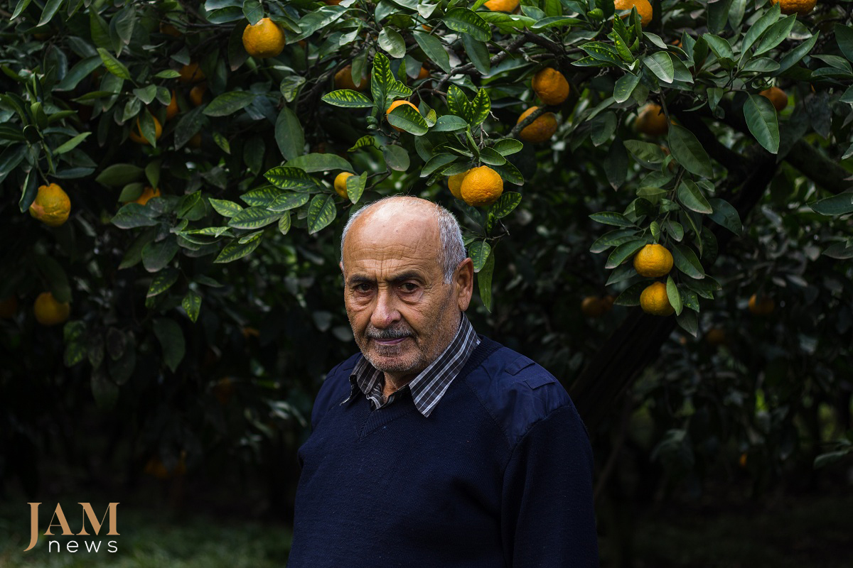 The South of Azerbaijan (Astara and Lenkoran) is known for its 'exotic fruits