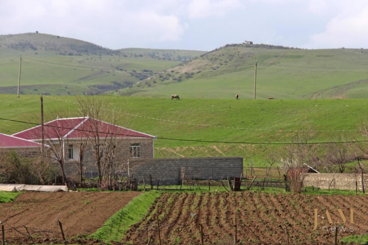 Bu region Gürcüstan bazarında ərzağın böyük hissəsini təmin edir. Foto: David Pipia,  JAMnews. Azərbaycan-Gürcüstan sərhədindəki minalar