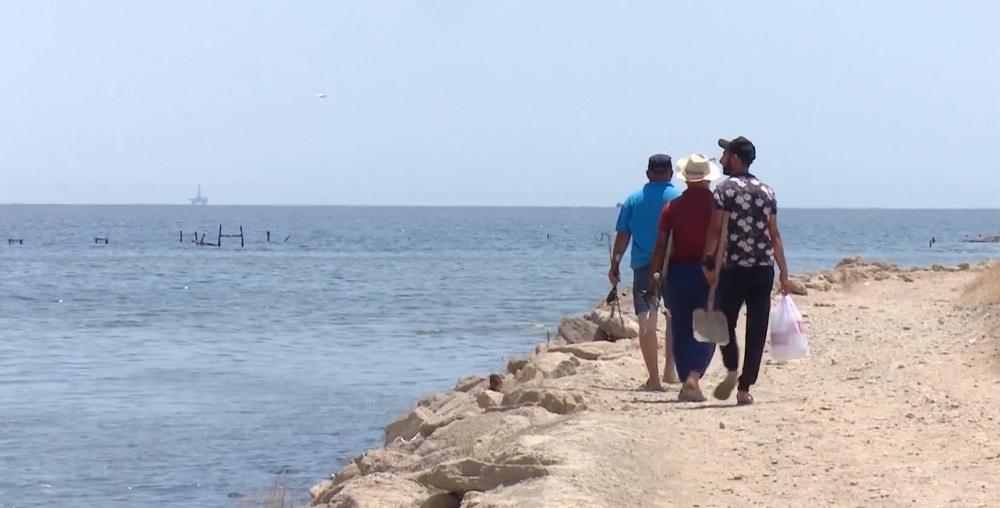 dead fish on Baku beaches