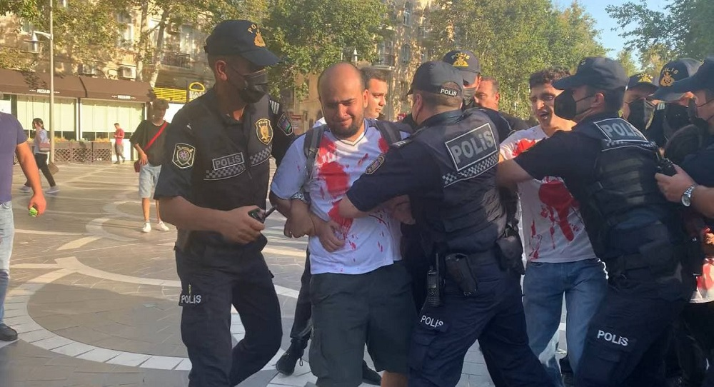 animal rights activists are protesting in Baku