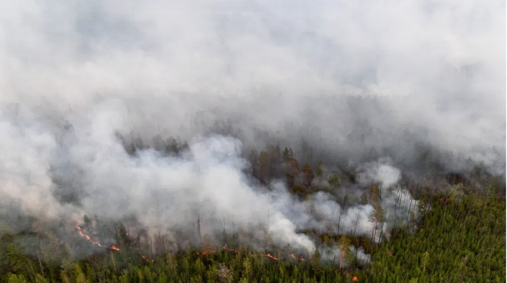 Forest fires in Yakutia